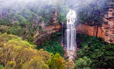 Blue Mountains Bespoke Tours